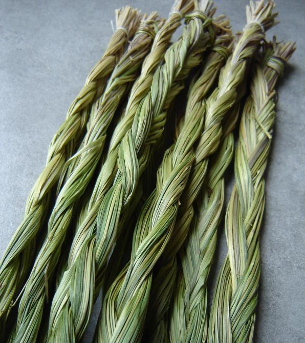 Treccia sweetgrass
