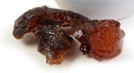 Resina di ciliegio (prunus avium)