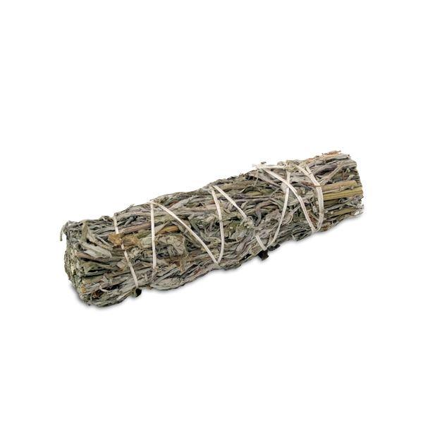 Smudge artemisia (Artemisia volgare)